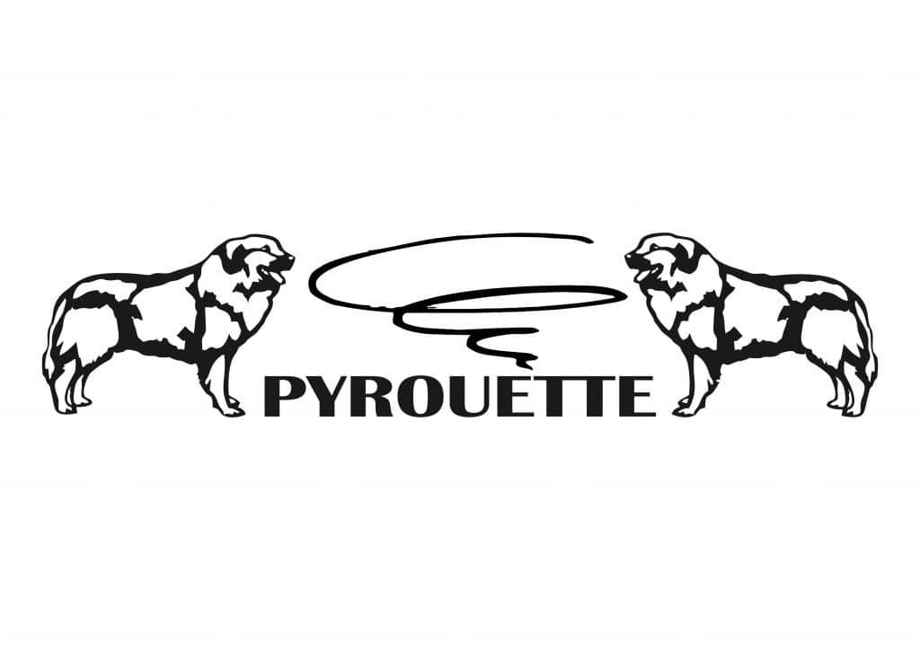Logo Pyrouette
